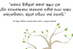 Post trees copy